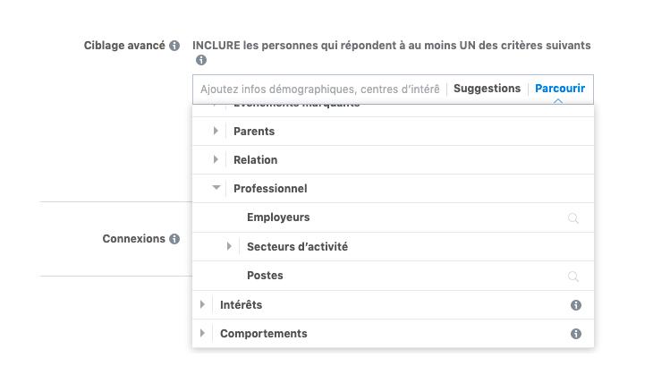 Capture d'écran des critères possibles pour cibler une publicité Facebook.